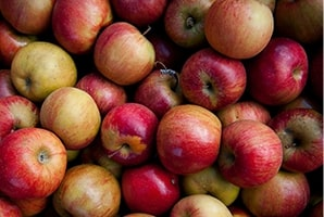 Local Fruit